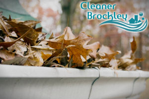 gutter-cleaners-brockley